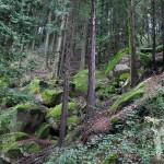 Camino Mirador Pedra