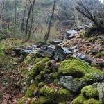 Entrada Pozo das Mulas, Pontón e Arandainas (Caurel)
