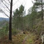 Camino A Cubela