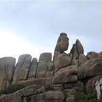 Piedra con forma de dinosaurio