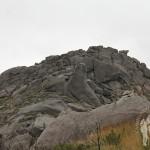 Piedra con forma de gato