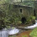 Ruta do Río Aceiteiro (San Sadurniño)