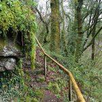 Escaleras cerca del canal de agua
