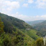 Pico Penaboa