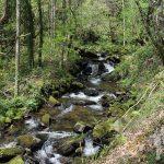 Río Agüeira