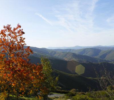 Ruta Albergue al Pico Fieiró (Cervantes)
