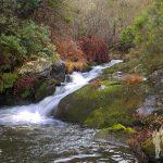 Poza río Outón