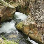 Canales del río de Oneta