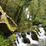 Río de Oneta