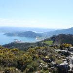 Monte Faroleiro