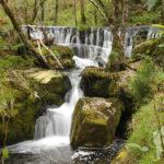 Salto de agua (río Loureiro)