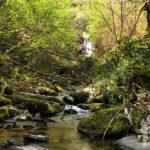 fervenza río Valdobarreiro