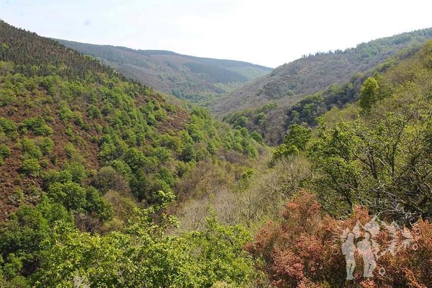Panorámica montañosa