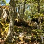 Piedras grandes