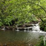 Río Lañas