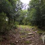 Camino hacia Casavella
