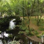 Río Mendo