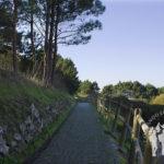 Camino hacia Insua