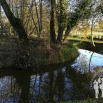 Río Carregal