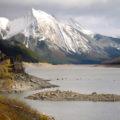 Lago Medicine (Jasper)