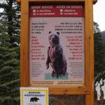 Advertencia: Área de osos