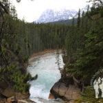 Sunwapta Falls (Jasper)