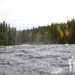 Río Murtle
