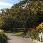 Jardín de Shakespeare