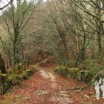 Monte Segade (Lugo)