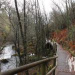 Pasarela río Mera