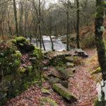 Molinos del Monte Segade (Lugo)