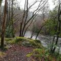 SM19 Paseo fluvial dos Caneiros (Betanzos)