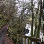 Paseo fluvial dos Caneiros