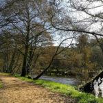 Sendero río Umia
