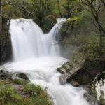Fervenza Río Castro (Narahío)