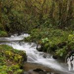 Río Turía