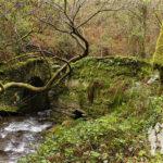 Puente de piedra antes de Vega de Zarza