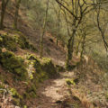 Camino Natural de la Ribeira Sacra