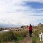 Punta Conchido