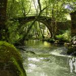 Puente de Lodeiro