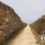 Camino hacia playa Seaia