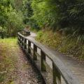 Paseo fluvial Río Landro (Viveiro)