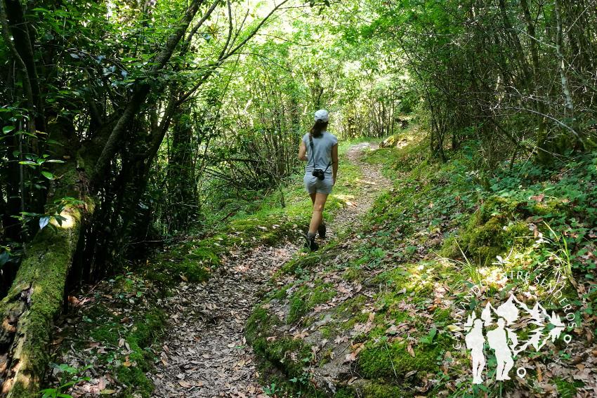 Camino Fervenza do Río Pereiro