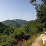 Subida hacia Cascata delle Vallocchie