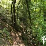 Pasarela Cascata delle Vallocchie