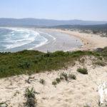 Dunas playa de Frouxeira