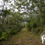 Sendero hacia Pico de Vallinas