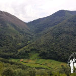 Cordillera primitiva Muniellos