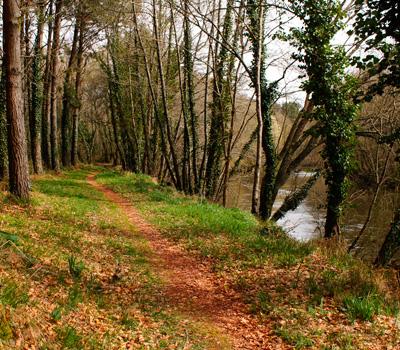Ruta do Tambre (Sigüeiro)