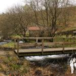 Puente río Mira